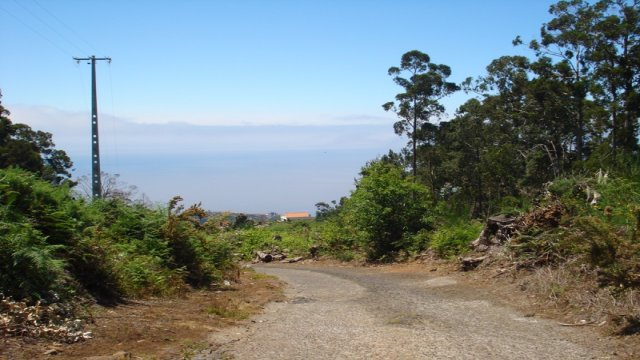 Ponta do Sol, Land